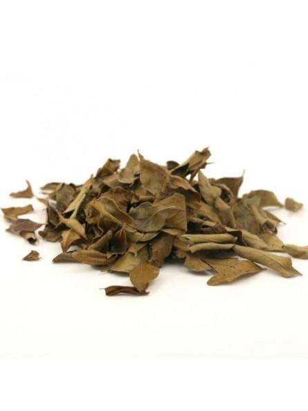 Kaloupile feuilles de curry