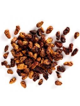baies sacrées patagonie poivre chiloe