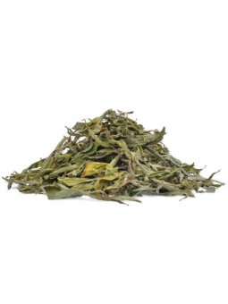 Feuilles de stevia rebaudiana séchées