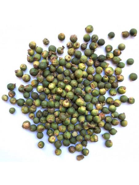 Poivre vert de Malabar lyophilisé bio