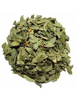 Feuilles de séné (sana mekhi) séchées pour tisane et infusion