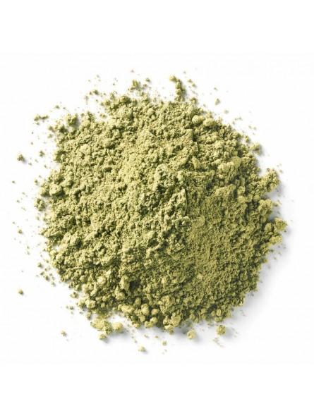 Paprika vert en poudre