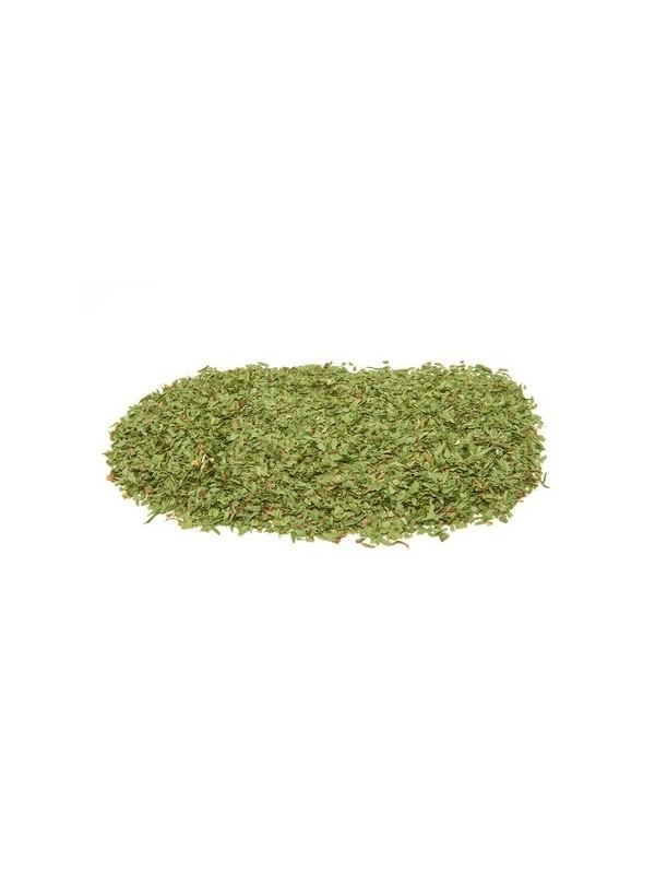 feuilles de coriandre seches