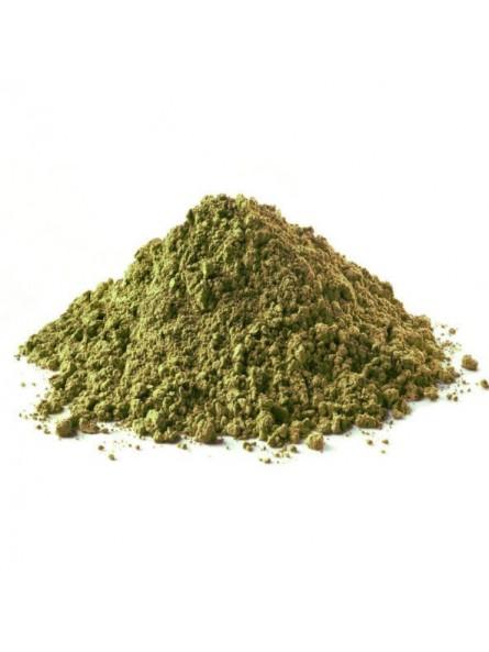 Molokheya poudre (feuilles de corète moulue)
