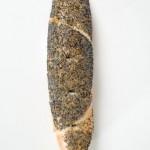 recette du pain au graines de pavot