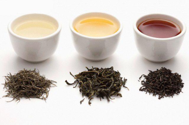 différents stades d'oxydation du thé