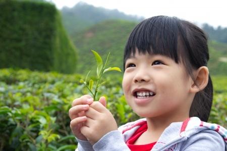 le thé et les enfants