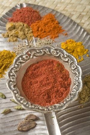 préparer son propre mélange tandoori