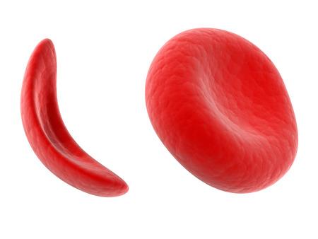 l anemie consequence gaura de vierme la stomac