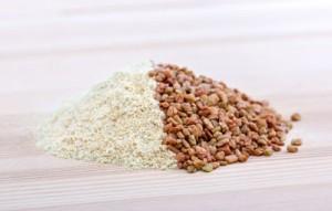 fenugrec en poudre et en graines