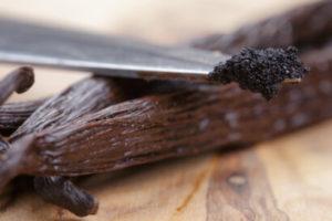 utilisation des gousses de vanille