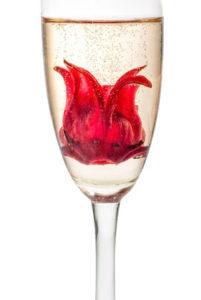 champagne à l'hibiscus