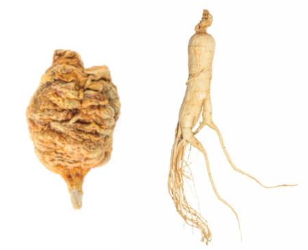 Maca vs ginseng : quelles différences et laquelle choisir ?