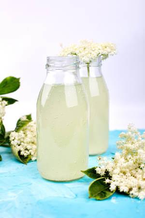 Recette : Limonade aux fleurs de sureau !