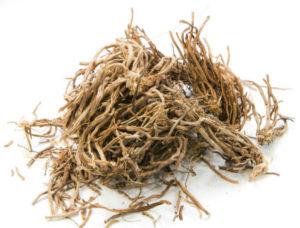 racines de ginseng blanc séchées